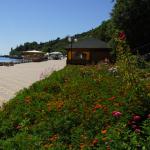 Туры в мае и на майские праздники в Крым  - пансионат Береговой Алушта  от 150 грн / 600 руб в день.